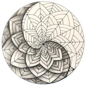 #260-Shattuck-yin-yang